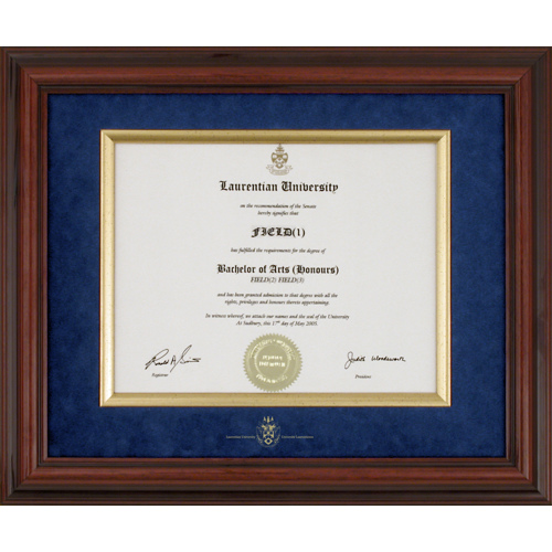 Diplomat Plus Style Diploma Frame Photo